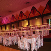 pink sheer wedding chair covers